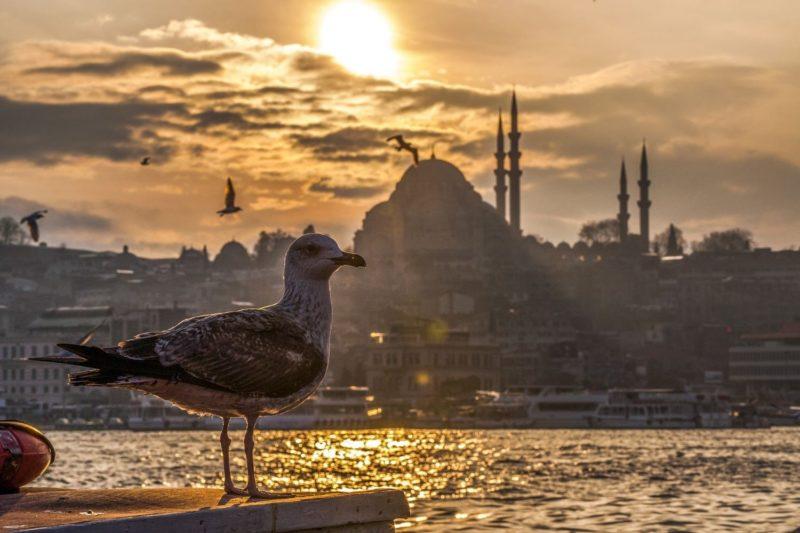 Kωνσταντινούπολη & Βόσπορος